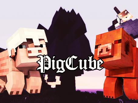 Logo Pigg