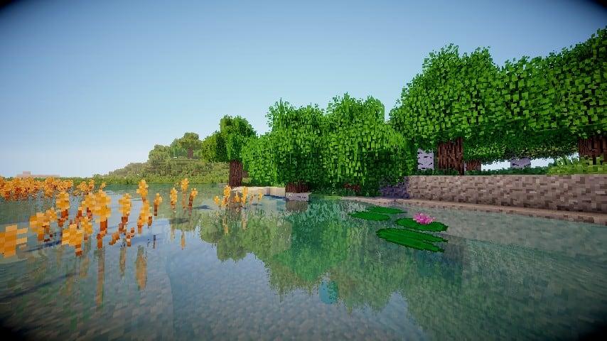 better-foliage-4.jpg